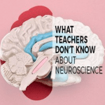What Teachers Don't Know about Neuroscience