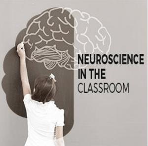 Neuroscience in the Classroom