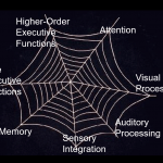 Web of Cognitive Skills