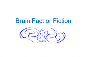 BrainFact or Fiction