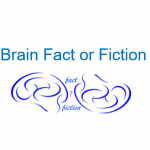 Brain Fact or Fiction: Neuromyths that Persist
