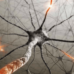 Neuroscience Based Learning Strategies