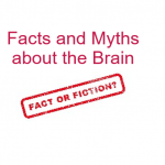 Facts and Myths about the Brain:  Can You Tell Them Apart?