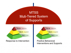 Cognitive Skills and MTSS
