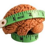 Does Brain Size Matter?