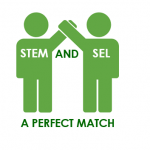 STEM and SEL: A Perfect Match