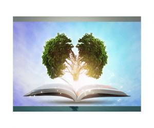 Book-Brain-Tree