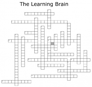 Learning Brain Crossword Puzzle
