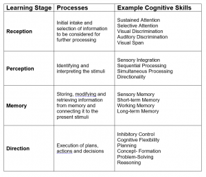 Cognitive Skills and Learning Stages
