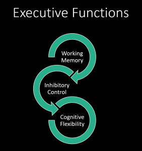 Working Memory Inhibitory Control Cognitive Flexibility